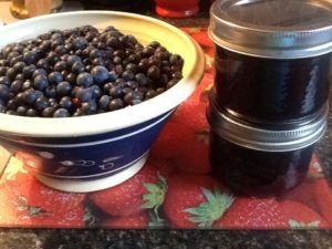 Traditional Newfoundland Blueberry Jam