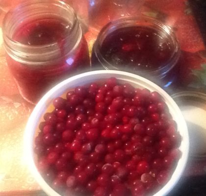 Traditional Newfoundland Partridgeberry Jam