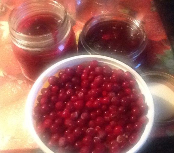 Traditional Newfoundland Partridgeberry Jam
