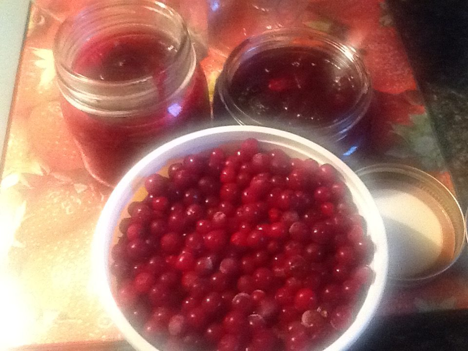how to make partridgeberry jam